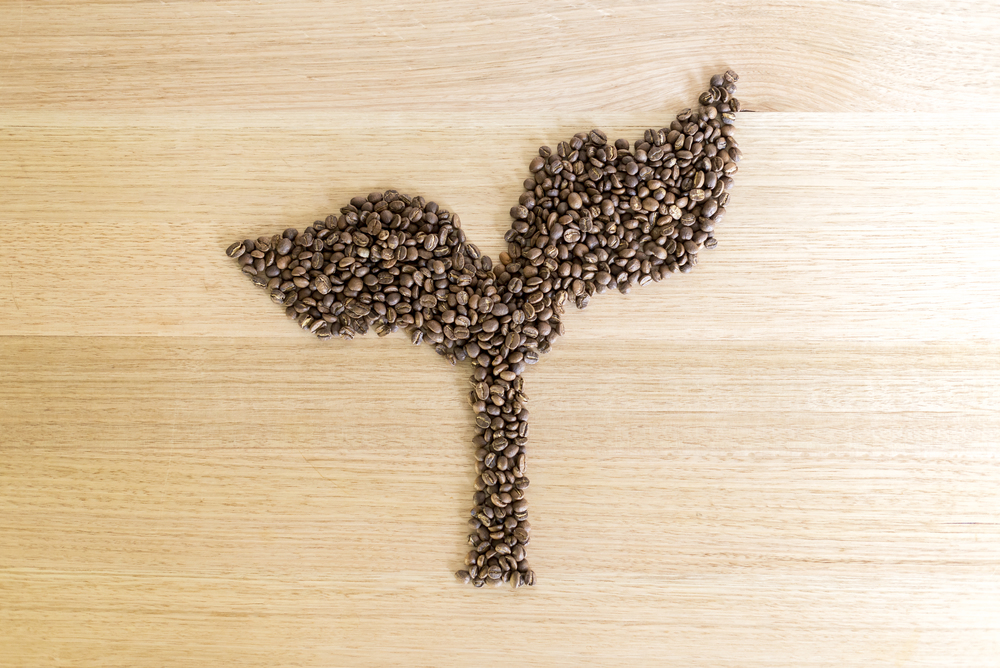 Promised Land Coffee logo