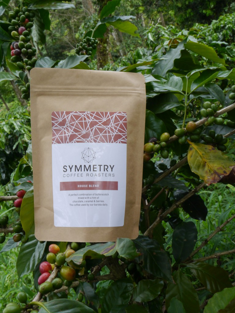 symmetry coffee tree