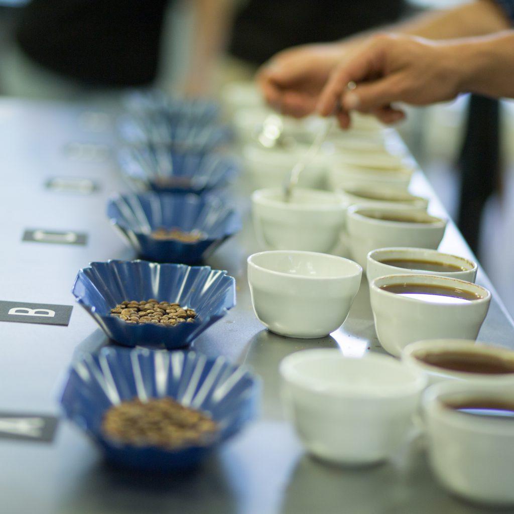 Syndicate Coffee tasting