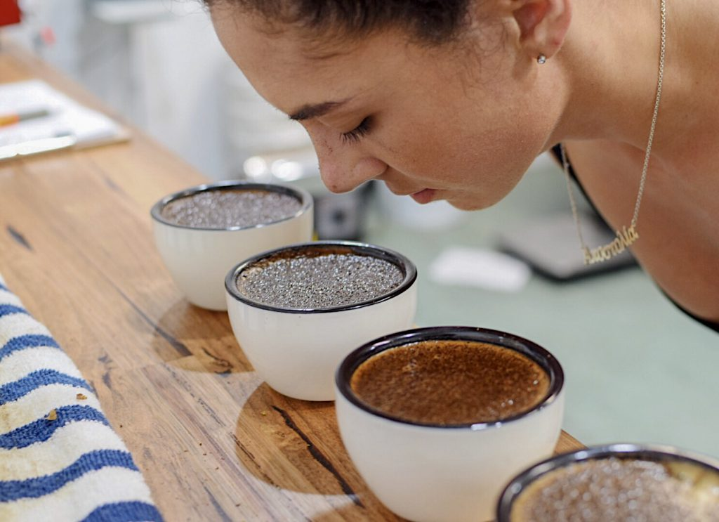 bonacci coffee roasters cupping tasting