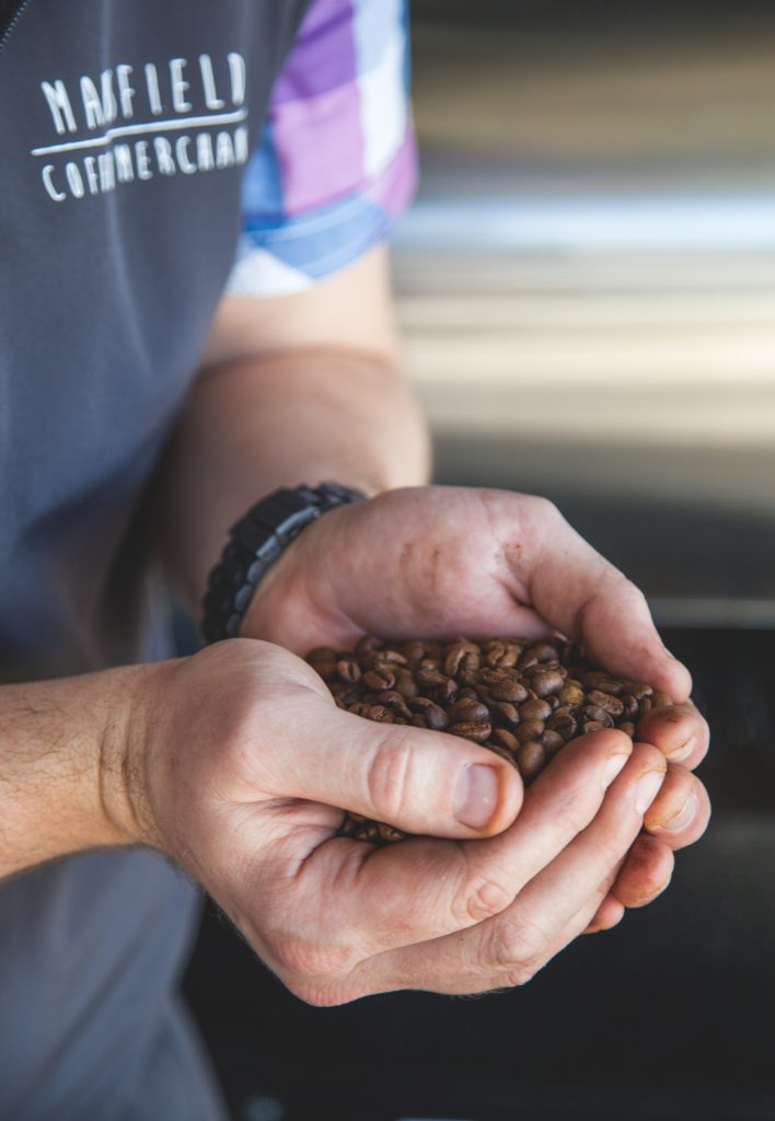 mansfield coffee merchant hands beans